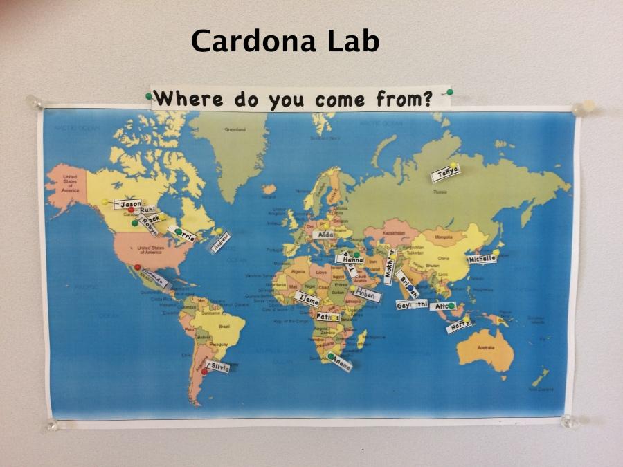 CardonaLab_WorldMap